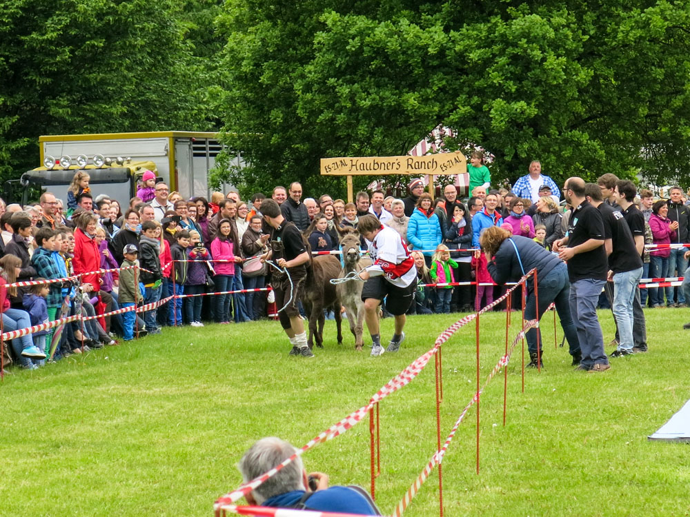 Eselrennen 2014