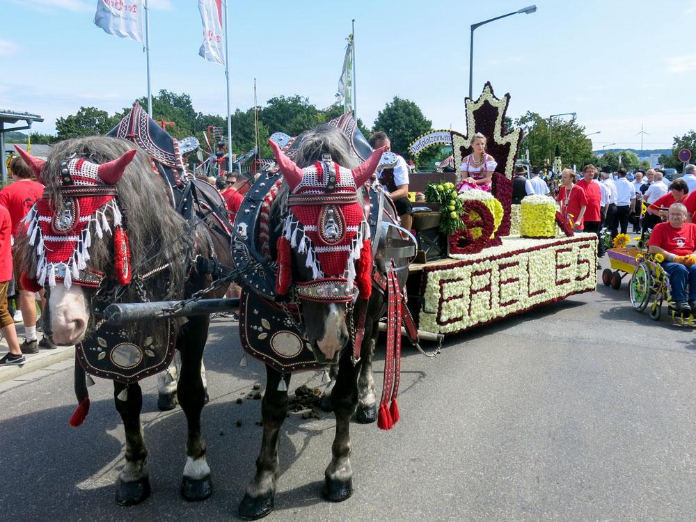 Volksfestzug 2014