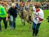 Eselrennen 2013